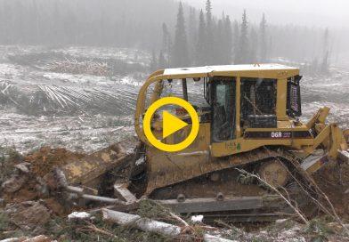 CAT D6R XW Dozer building a logging road in Canada