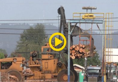 Fast Logging Truck on Highway & Unloading