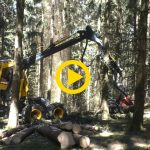 Eco Log 688 & Logmax 6000Twin in France