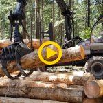 Logset 6F GT – Euroforest 2018