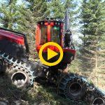 Komatsu 901XC & S92 | First Thinning in Austria