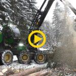 John Deere 1270G | BIG trees