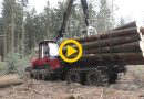 Komatsu 835 | Schönes Holz