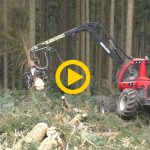 Komatsuforest 951 & C144 | Powercutting